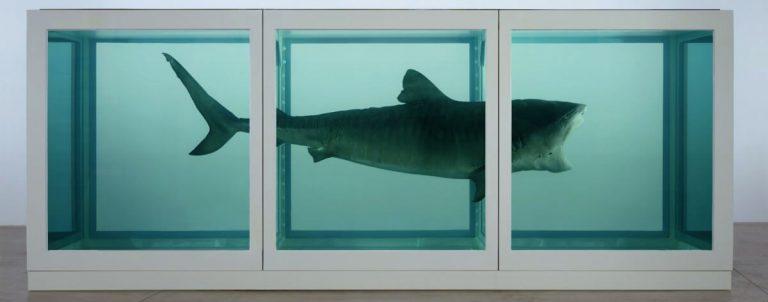 Sensation 1997 - Damien Hirst - Tiburón en formaldehido
