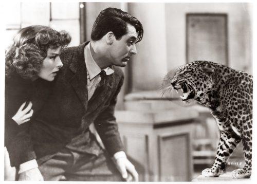Película La Fiera de mi niña de Howard Hawks con Katharine Hepburn, y Cary Grant